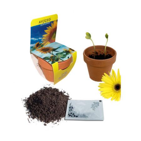 Bitki Dikim Seti